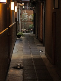 alley5