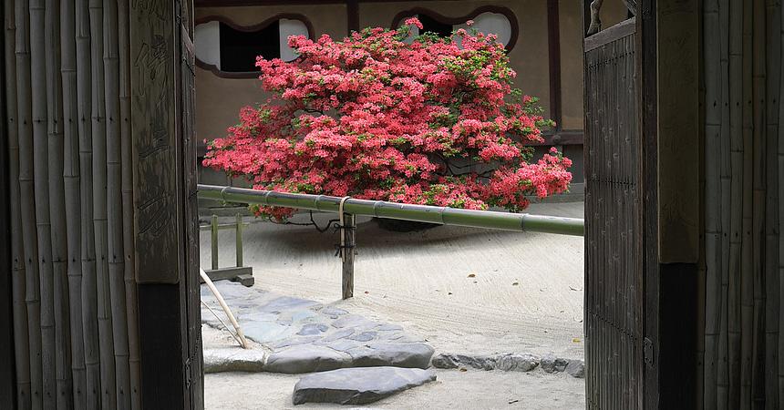 shisen-do